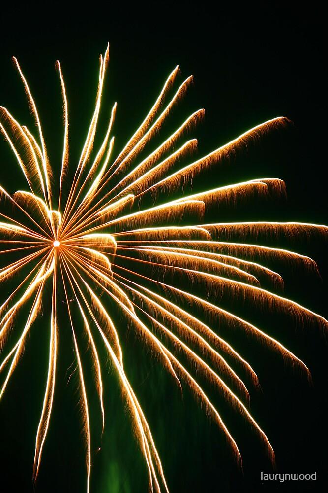 Fireworks 1 by laurynwood