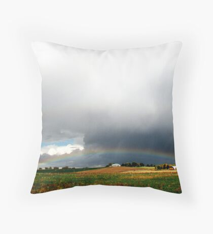 Rain Starts the Water Cycle Throw Pillow