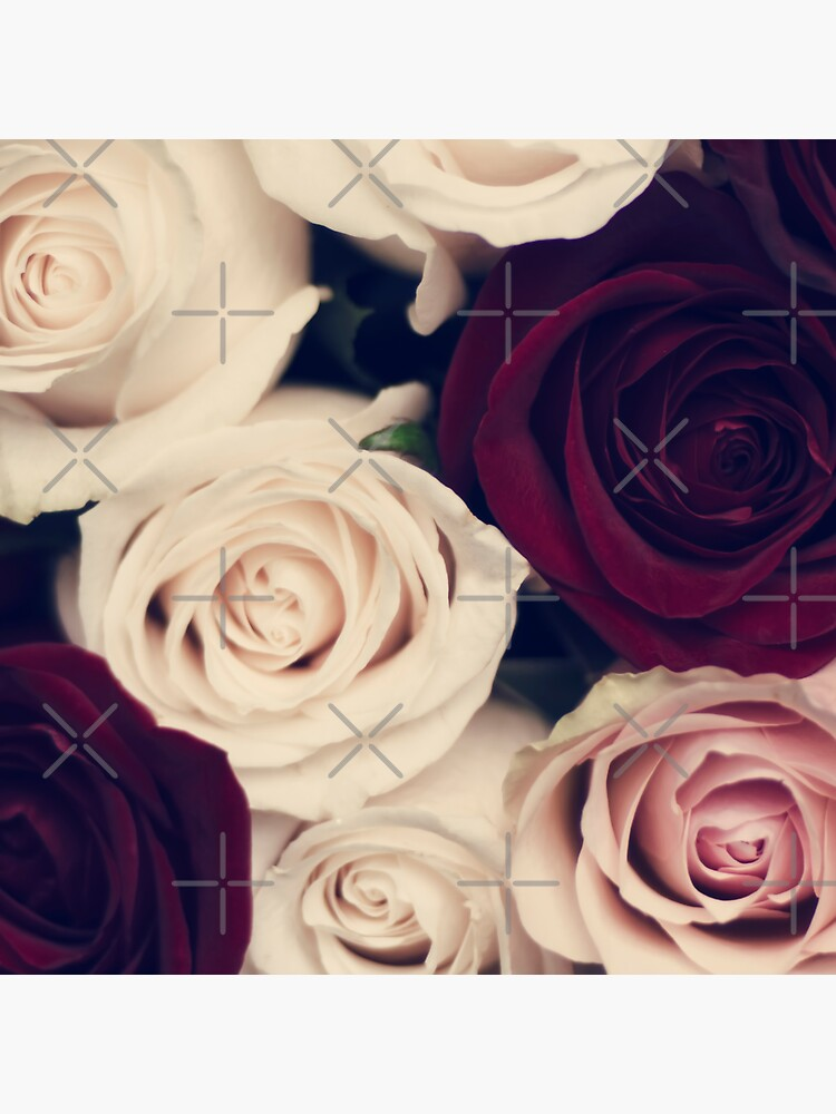rose bouquet  by Ingz