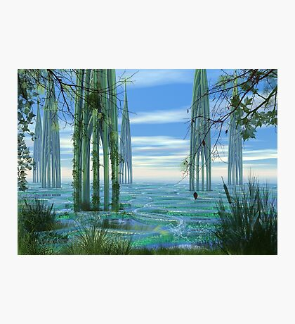 Cathedrals Photographic Print