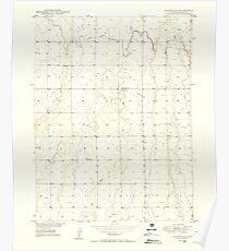 USGS TOPO Map Colorado CO Sunnydale 402120 1949 24000 Poster
