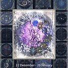 ARTFUL ASTROLOGY - CAPRICORN  by FRANKEY CRAIG