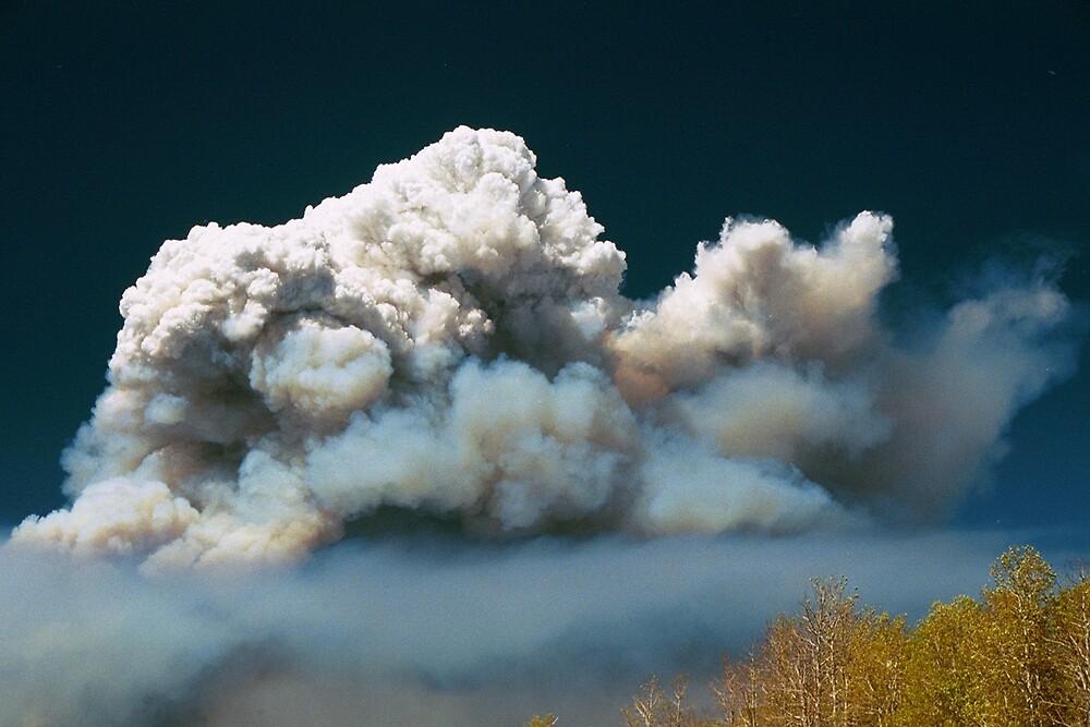 Sierra Fire 1 by fishinfool
