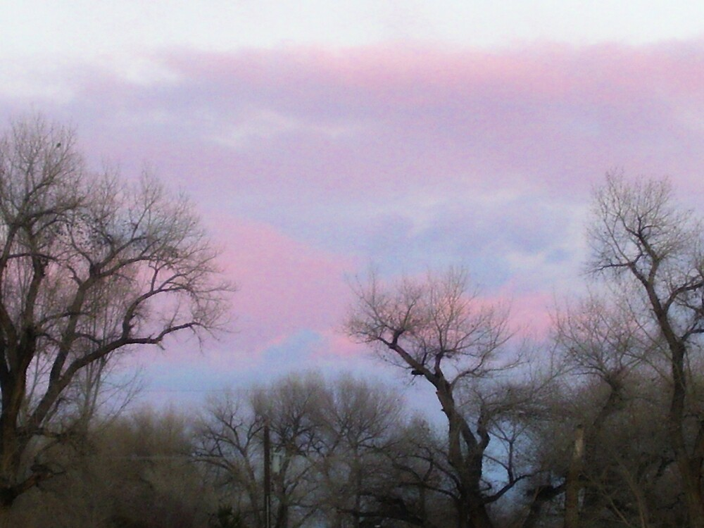 pink and blue skies by kristal ingersoll
