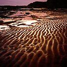 Dusk at Kilkunda Beach by Roz McQuillan