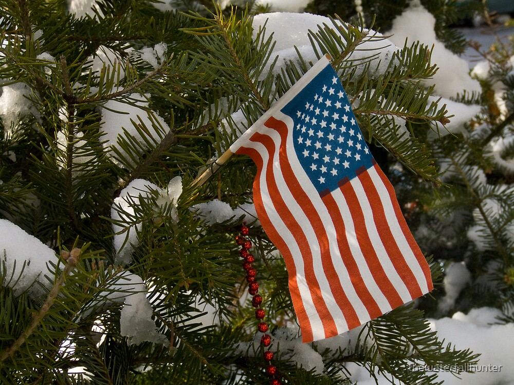 Patriotic Christmas by thewaterfallhunter