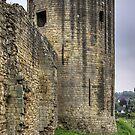 Barnard Castle Tower by Tom Gomez