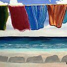 Towels Drying by WhiteDove Studio kj gordon