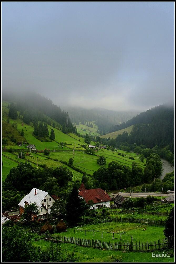 Rural by BaciuC
