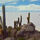 Incahuasi - The island of Dream by Brian Bo Mei