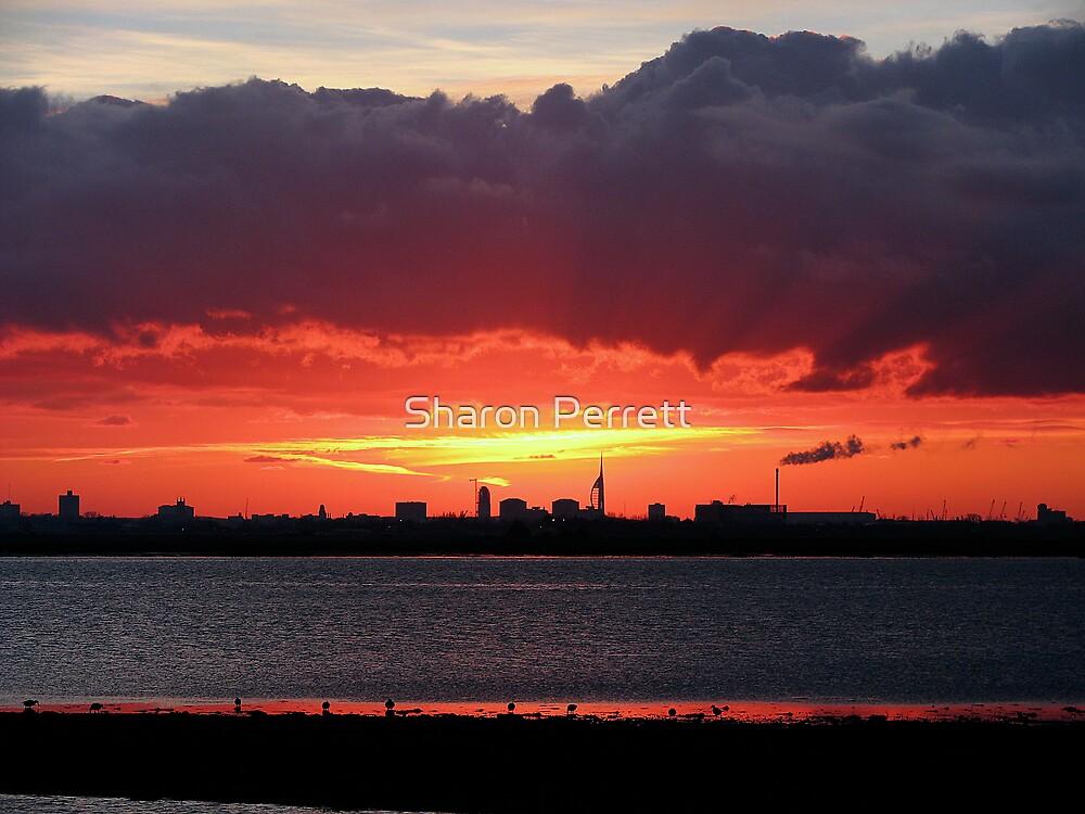 Sunset 2 12-12-07 by Sharon Perrett