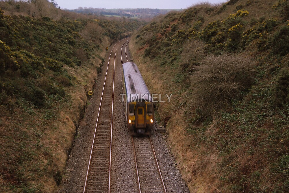 TRAIN   IN A HURRY  by TIMKIELY