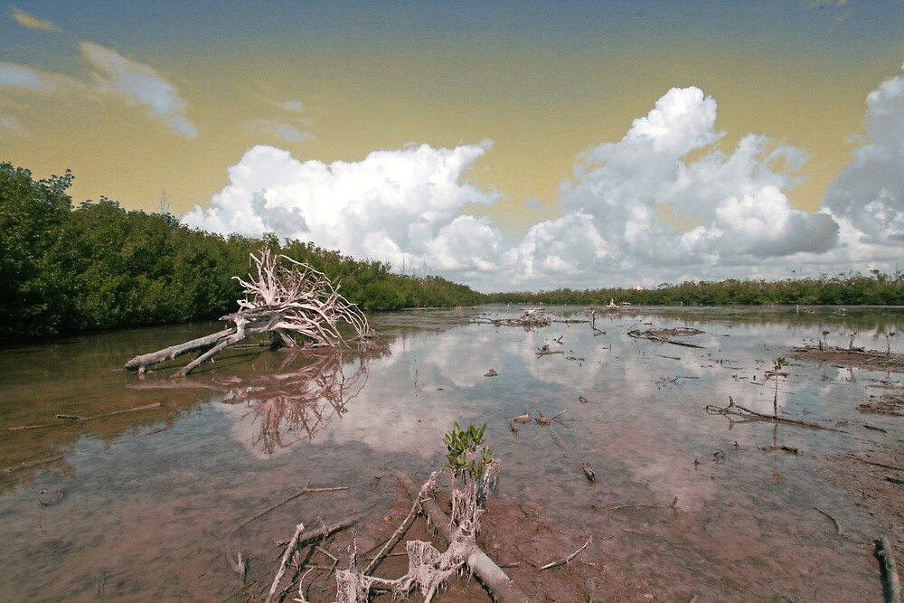 Low Tide At The Key by Ricky Howard