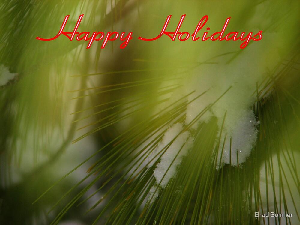 Happy Holidays 2 by Brad Sumner