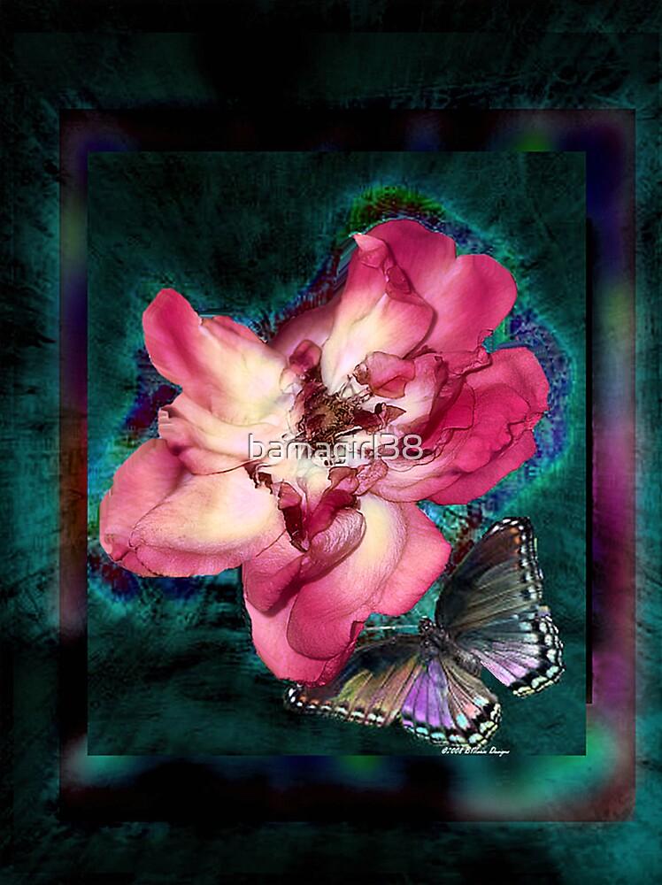 Loving You Card 1 by bamagirl38