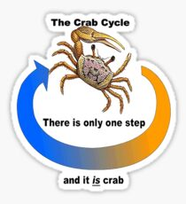 Crab Cycle Sticker