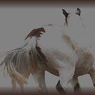 horse  by conilouz