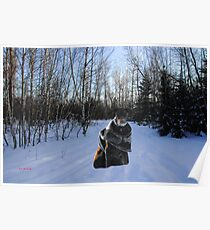 River on Cross-country Ski Trail in Park Voyageur Poster