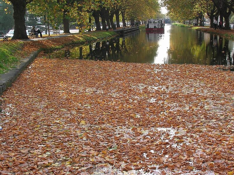 Autumn Afternoon On the Grand Canal Dublin ! by irished