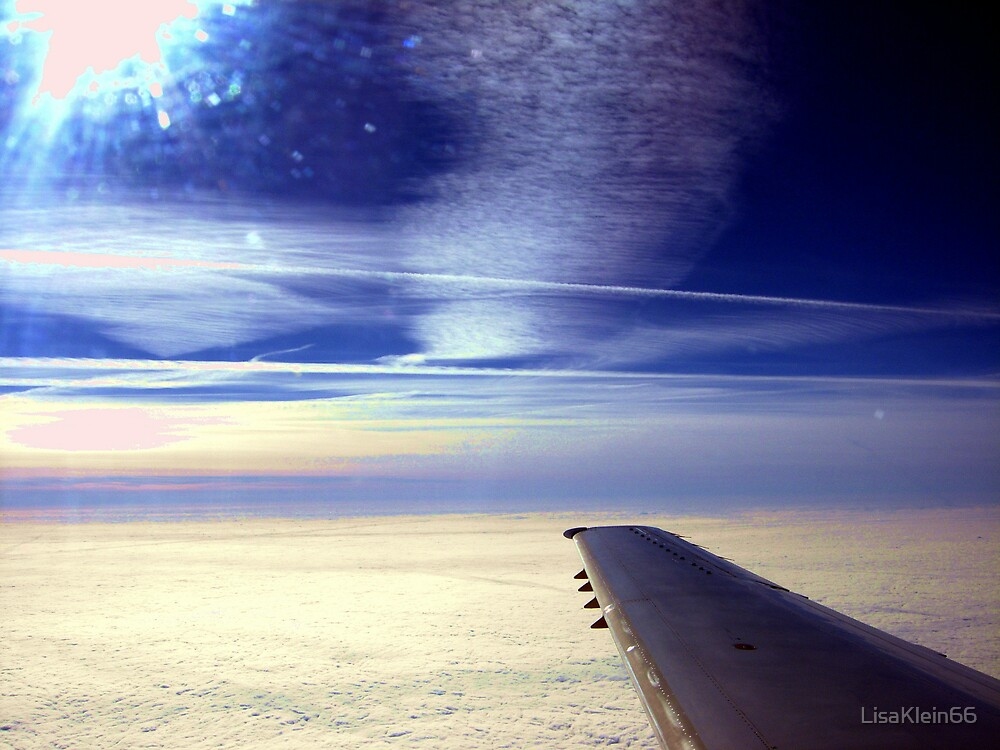 Off the Wing by LisaKlein66