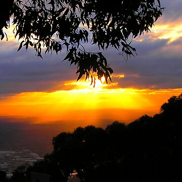 Sunset from Mt. Dandenong Observatory by PaulK