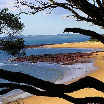 Red Rocks Beach, Phillip Island, Vic. by PaulK
