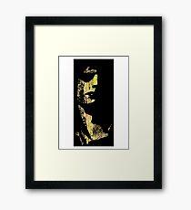 SYD BARRETT 2 Framed Print