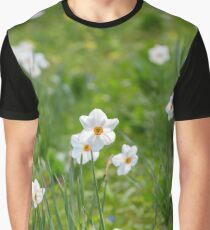 Beautiful daffodils on sunshine in springtime Graphic T-Shirt