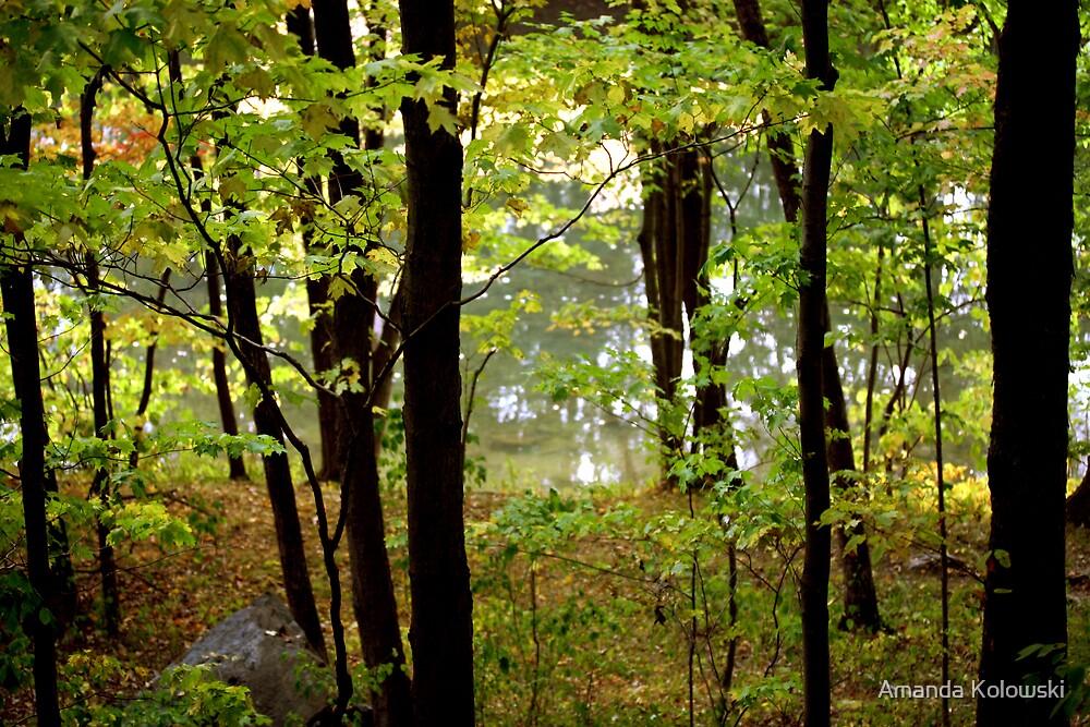 Green Creek by Amanda Kolowski
