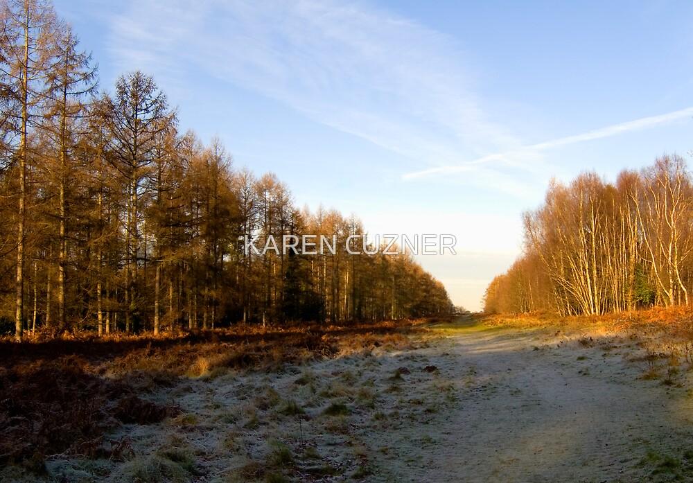 Winter in Hampshire England by KAREN CUZNER