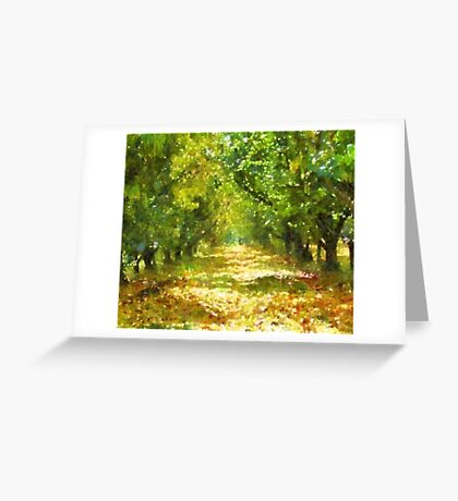 Dappled Light of Day Dreams Greeting Card