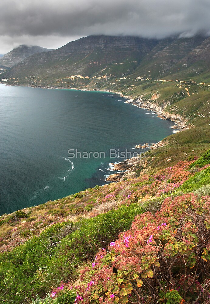 The Fairest Cape #'3 by Sharon Bishop