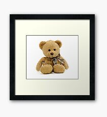 Cute Teddy Bear Framed Print