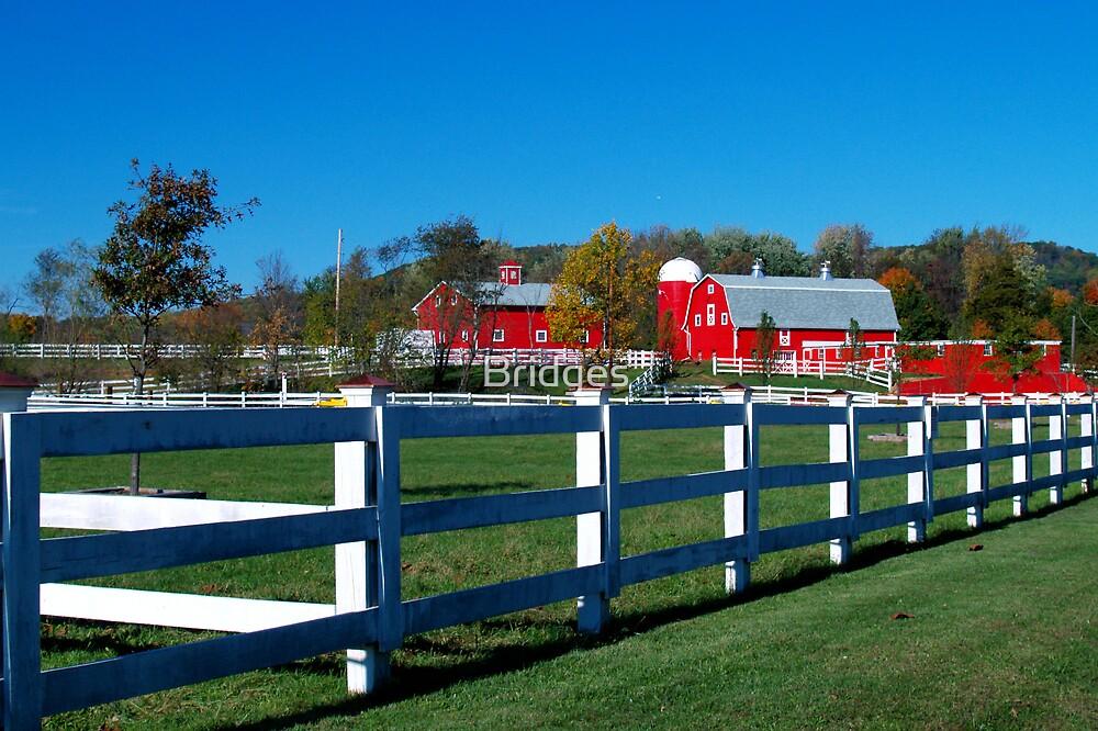 The Red Farm by Bridges