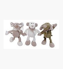 So Cute Plushes Photographic Print