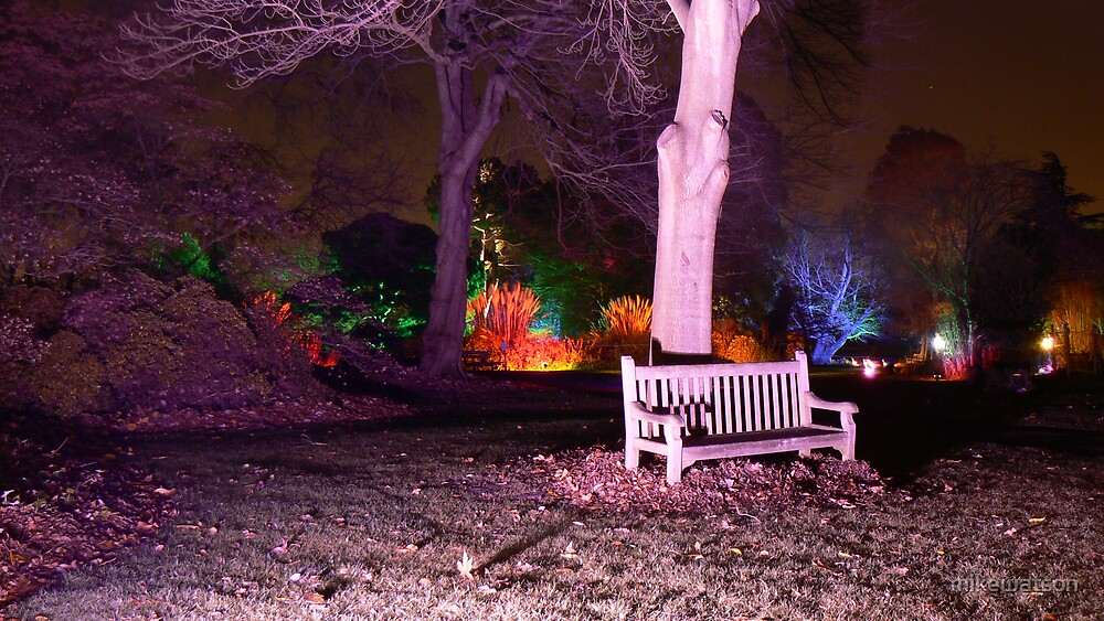 Enchanted Garden by mikewatson