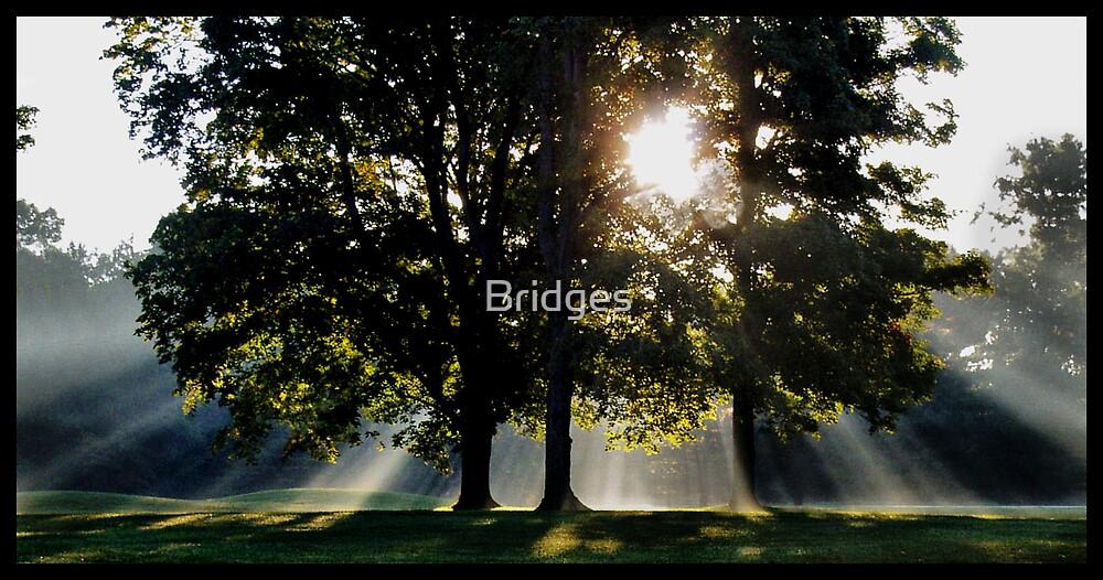 7 a.m. on the Grace Course by Bridges