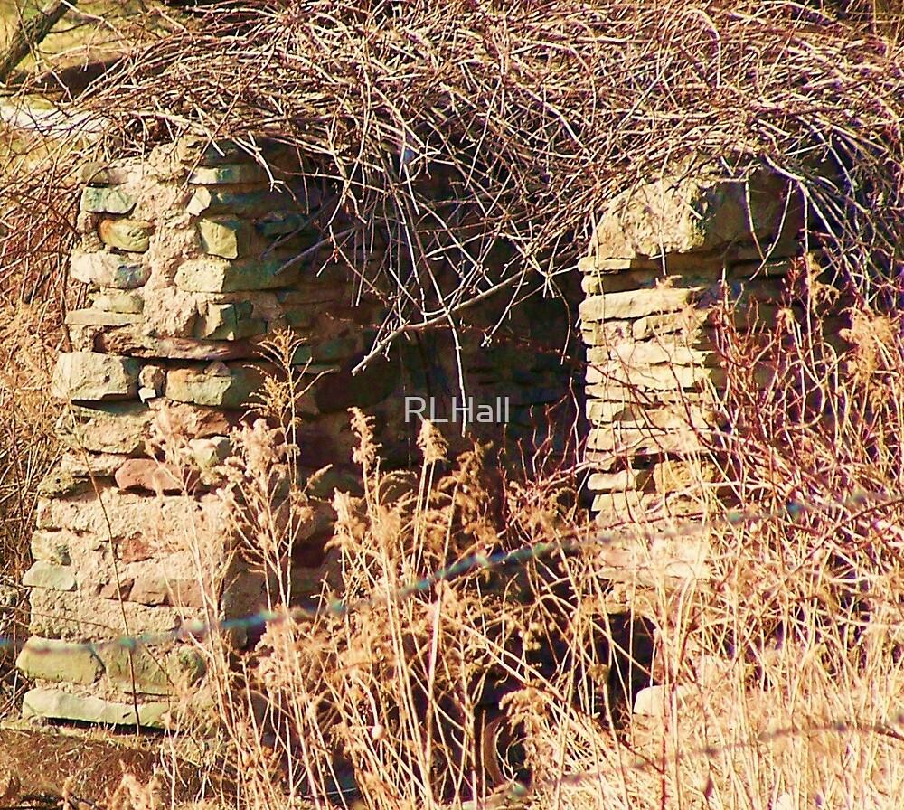 Overgrown Stonework by RLHall