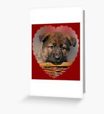 Puppy Red Heart Greeting Card
