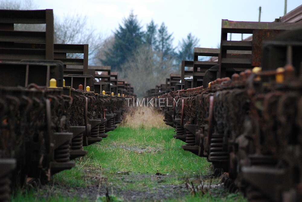 TRAIN LAID TO RUST  by TIMKIELY