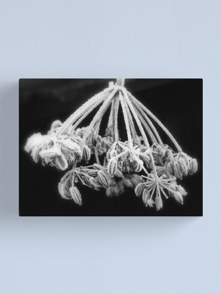 Alternate view of Sugar Frosting #2 Canvas Print