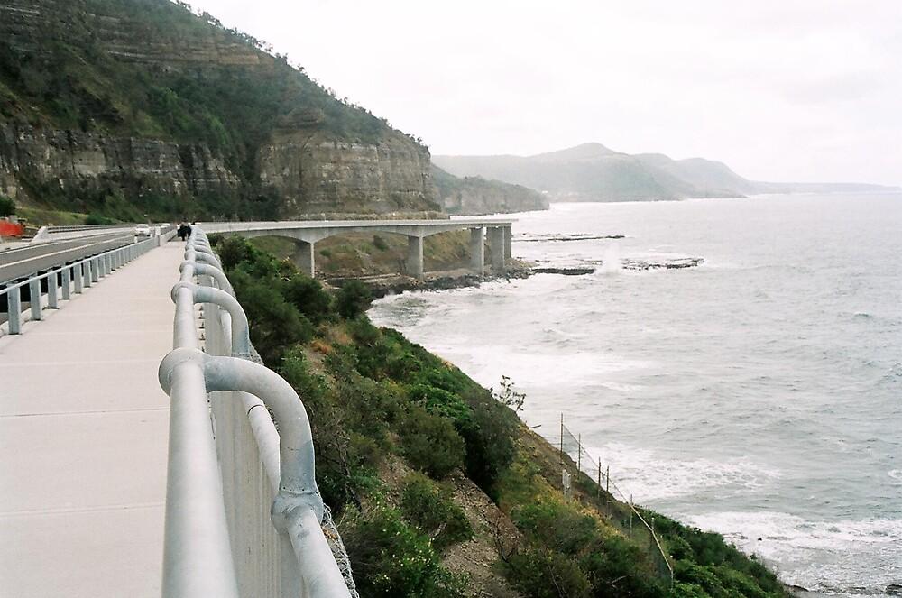 Tourist Bridge by Cecilmax