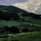 Winding Road to the Clouds by Wayne King