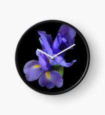 Incredible Iris on black Clock