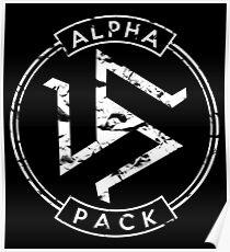 Alpha Pack - Teen Wolf Poster