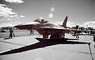 F-16C Block 30D Fighting Falcon  by John Schneider
