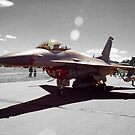 F-16C Block 30D Fighting Falcon  by John Schneider