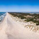 Aerial view of Torreira beach by homydesign