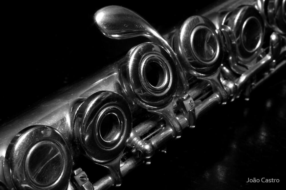 Flute 6061 by João Castro