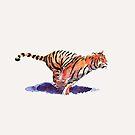 The Tiger by Dan Tabata